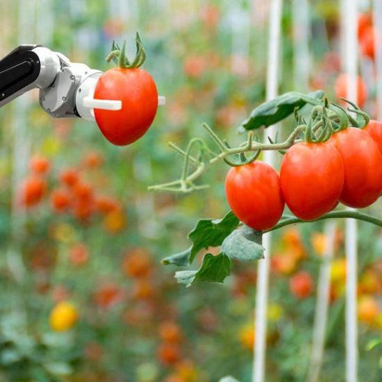 gli-agri-robot