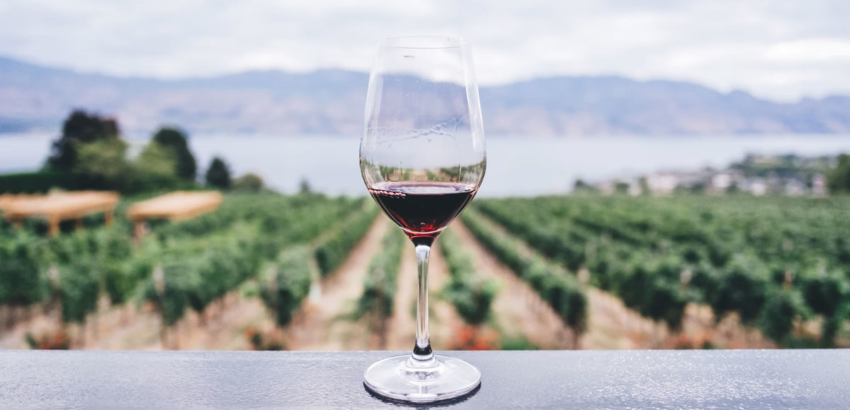 vino-classifica