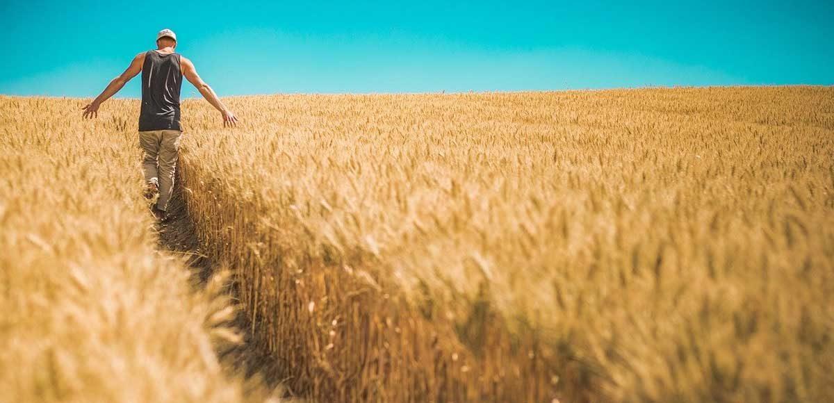 giovani-ettari-agricoltura