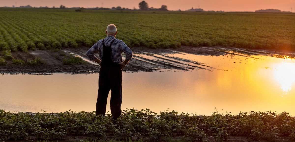 agricoltura-in-difficolta
