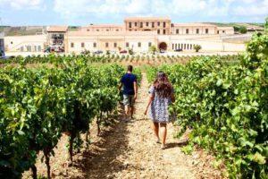 Assuli-Winery-Sicily