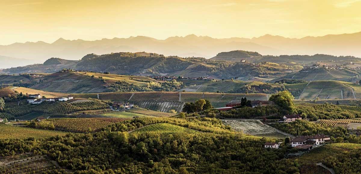 alto-piemonte-vino-degustazione
