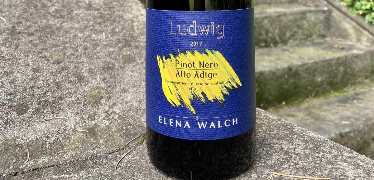 ludwig-elena-walch