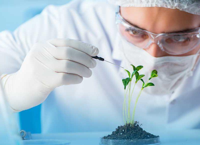 italia-biotecnologie